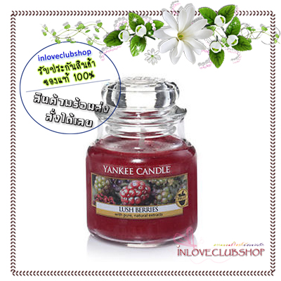 Yankee Candle / Small Jar Candle 3.7 oz. (Lush Berries)
