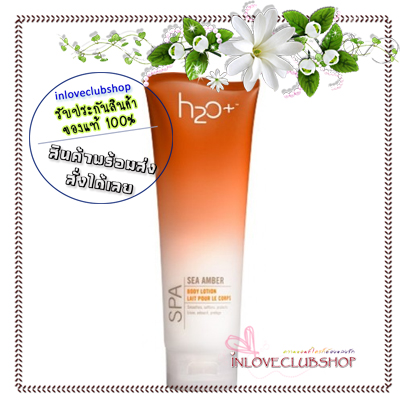 H2O Plus / Body Lotion 240 ml. (Sea Amber)