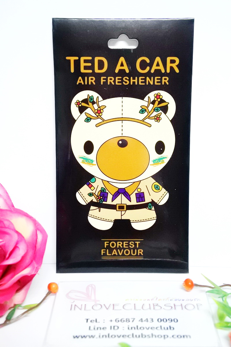 Ted A Car / Air Freshener (Forest)