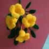 บานบุรีสีเหลืองถัก