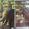 VCD สารคดี ตำนานช้างไทย
