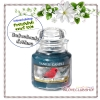 Yankee Candle / Small Jar Candle 3.7 oz. (Sparkling Balsam)