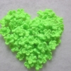 ดอกไม้จิ๋วสีเขียว