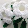บานบุรีถักสีขาว (white color allamanda)