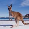 เอกสารการขอวีซ่าไปออสเตรเลีย