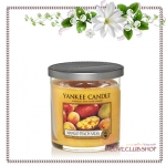 Yankee Candle / Small Tumbler Candle (single wick) 7 oz. (Mango Peach Salsa)