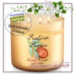 Bath & Body Works Slatkin & Co / Candle 14.5 oz. (Praline Pecan)