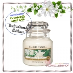 Yankee Candle / Small Jar Candle 3.7 oz. (Sparkling Snow)