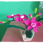 กล้วยไม้ถัก (orchid crochet)