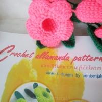 แพทเทิร์นดอกไม้ถักโครเชต์ (Pattern crochet)