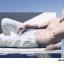 Salvatore Ferragamo Acqua Essenziale Pour Homme Gift Set thumbnail 2