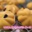 สอนทำขนมไข่ ขนมไข่นุ่มนิ่ม ขนมไข่สอดไส้ thumbnail 57