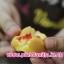 สอนทำขนมไข่ ขนมไข่นุ่มนิ่ม ขนมไข่สอดไส้ thumbnail 60