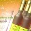 มัชรูม ดริงค์ Mushroom Drink น้ำเห็ดสกัดเพื่อสุขภาพ 6 สายพันธุ์ บรรเทาอาการเจ็บป่วยต่างๆ ไม่ว่าจะเป็นโรคเบาหวาน โรคมะเร็งต่างๆ โรคริดสีดวงทวาร ปรับการสร้างภูมิคุ้มกันโรคและระบบขับถ่ายให้ดีขึ้น thumbnail 2