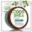 Bath & Body Works / Aloe Gel Lotion 226 ml. (Cocoshea Cucumber) *Limited Edition thumbnail 1