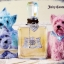 Juicy Couture (EAU DE PARFUM) thumbnail 5