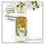 Bath & Body Works / Body Lotion 236 ml. (Vanilla Bean Noel) *Limited Edition thumbnail 1