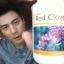 Red Clover Plus เรด โคลเวอร์ พลัส อาหารเสริมที่โดมทาน สมุนไพรล้างสารพิษในตับ ไต ช่วยฟอกเลือดให้สะอาด thumbnail 1