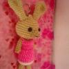 กระ่ต่ายชมพูหูยาว