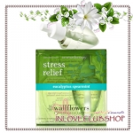 Bath & Body Works / Wallflowers 2-Pack Refills 48 ml. (Aromatherapy Eucalyptus Spearmint)