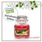 Yankee Candle / Small Jar Candle 3.7 oz. (MacIntosh)