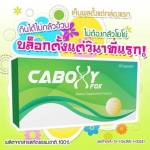 Caboxy X-Fox คาบ๊อกซี่ เอ็กซ์ ฟ๊อกซ์