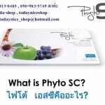 Phyto SC stem cell บำบัดร่างกายคืนสู่วัยหนุ่มสาวอีกครั้ง ไฟโตเอสซี ราคาถูก ลด 40 - 60 %