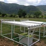 ชุดปลูกผักไฮโดรโปนิกส์ Hydro Hobby Set 205