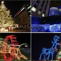 ร้านขายไฟกระพริบ LED ไฟตาข่าย ไฟดาวตก ไฟประดับ ไฟสวยงามขายราคาถูกส่งทั่วประเทศ