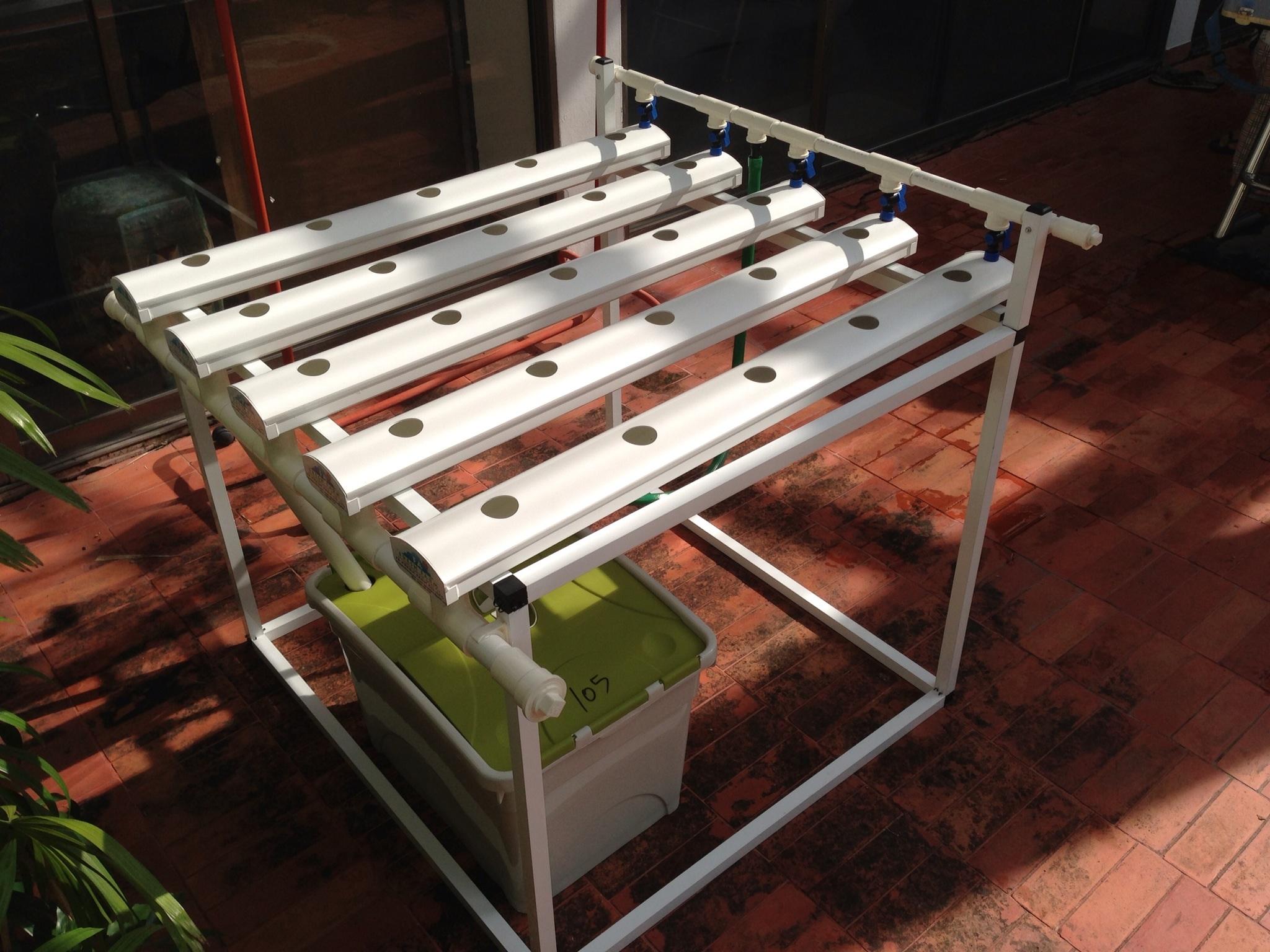 ชุดปลูกผักไฮโดรโปนิกส์ Hydro Hobby Set 105