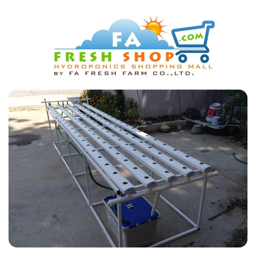 ชุดปลูกผักไฮโดรโปนิกส์ Hydro Hobby Set 405